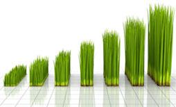 Finance pro výrobní firmu znamenají to samé, jako voda pro trávník.