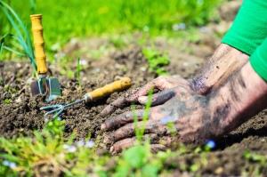 zahradnici oda