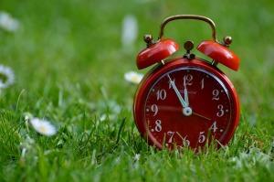 Doba sekání trávy a životnost sekačky